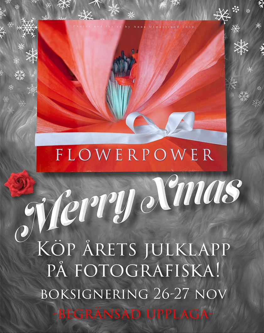 flowerpower_2016